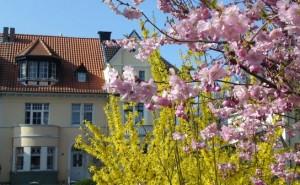 mensch-und-immobilie.de/familie-und-immobilie